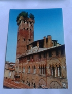 LUCCA - PALAZZO GUINIGI (3345) - Lucca