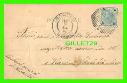 ENTIERS POSTAUX, SCHLAN, TCHÉQUIE - 5 HELLER   1900  - - Cartes Postales