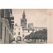 SVLLTPA1920-LFTD3116.Tarjeta Postal DE SEVILLA.Edificios.PATIO DE LOS NARANJOS Y LA GIRALDA  De  SEVILLA - Iglesias Y Catedrales