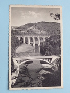 Herbeumont S/Semois - Camp A.E.P. Kamp ( Thill ) Anno 1953 ( Zie Foto Details ) !! - Herbeumont
