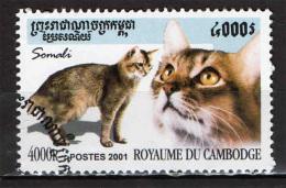 CAMBOGIA - 2001 - GATTO SOMALO - CAT - USATO - Kambodscha
