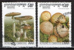 CAMBOGIA - 2000 - FUNGHI - MUSHROOMS - USATI - Kambodscha