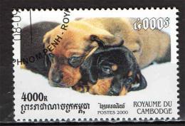 CAMBOGIA - 2000 - CUCCIOLI DI CANE - USATO - Kambodscha