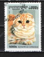 CAMBOGIA - 1997 - GATTO DOMESTICO - CAT - USATO - Kambodscha