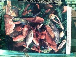 RECETTE DE CUISINE LA BOUILLABAISSE PESCI GAMBERI COZZE CONCHIGLIA  COZZA  VB1965 FV8808 - Ricette Di Cucina