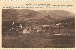 Pierreclos Ses Coteaux De Vignes - Altri Comuni