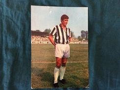 Cartolina Di Benito Sarti Della Juventus - Fútbol