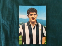 Cartolina Di Erminio Favalli (II) Della Juventus - Fútbol