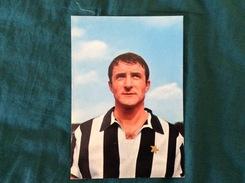 Cartolina Di Giampaolo Menichelli Della Juventus - Fútbol