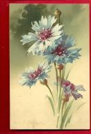 FJK-18 Illustrateur C Klein, Bouquet De Bleuets.  Circulé En Italie En 1912 - Klein, Catharina