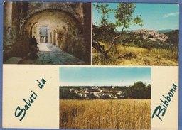 BIBBONA (Livorno) -F/G   Colore (90509) - Altre Città