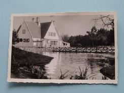 Le Chalet Du Zwin ( Nr. 36 ( Copyright Leon Lippens ) Anno 1955 ( Zie Foto Details ) !! - Knokke