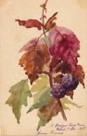 Illustrateur - Signée Jeanne Jacquos - Aquarelle - Feuilles De Mûrier - Daté 1908 - Acquarelli