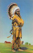 Pueblo Indian Dancer In Full Regalia - Carte Non Circulée - Indiens De L'Amerique Du Nord