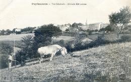 Tarn - Puylaurens - Vue Générale - Altitude 350 Mètres - Labour Avec Attelage De Vaches - Puylaurens