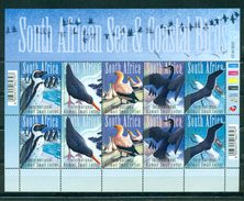 RSA 2009- Airmail-Sea And Costal Birds Of South Africa M/Sheet - Zuid-Afrika (1961-...)