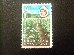 RHODESIA & NYASSALAND 1963 Plantación Yvert N º 45 º FU - Rodesia & Nyasaland (1954-1963)