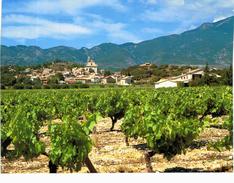 Bedoin - Le Village Et Les Vignes - France