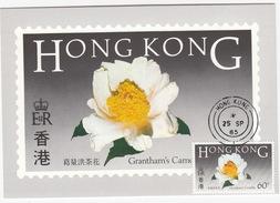 Flowers Of Hong Kong + 'GRANTHAM'S CAMELILA' 60c Stamp - Hong Kong Post Office Postcard Series No.2  - 1985 - China (Hongkong)