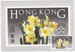 Flowers Of Hong Kong + 'NARCISSUS' $1.30 Stamp - Hong Kong Post Office Postcard Series No.2  - 1985 - China (Hongkong)