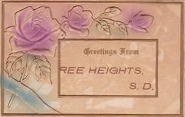 REE HEIGHTS , South Dakota , 1910 ; Flower Greetings - United States