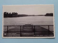 Grafmonument EMILE VERHAEREN ( Famaey ) Anno 19?? ( Zie Foto Details ) !! - Sint-Amands