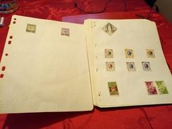 D0717 LOT FEUILLES MONDE A TRIER BELLE COTE DÉPART 10€ - Sammlungen (im Alben)