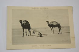 (MEL 17) CPA SAHARA - La Prière Au Désert. - Sahara Occidental