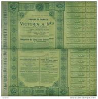 Obligation De Cinq Cents Francs COMPAGNIE Du Chemin De Fer VICTORIA à MINAS 31 Juillet 1902 - Navigation