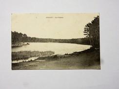 64 ANGLET : Lac Chiberta - Anglet