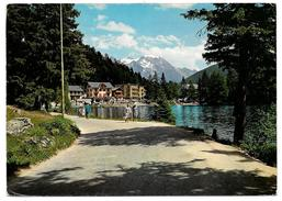 Station De Champex Avec Le Grand Combin - Ed Darbellay No 16223 - 1972 - VS Valais