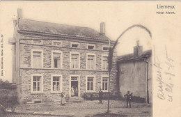 Lierneux - Hôtel Albert (animée, 1905, Nels) - Lierneux