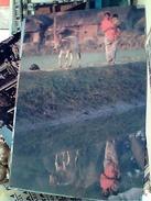 BANGLADESH DONNA AL LAVORO N1985 FV8925 - Bangladesh