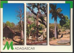 °°° 59 - MADAGASCAR - TYPES DE VEGETATION - 1999 With Stamps °°° - Madagascar