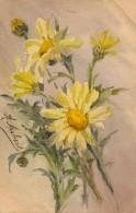 Illustrateur - A. Aubert - Aquarelle - Bouquet De Marguerites - Datée 1908 - Aquarelles