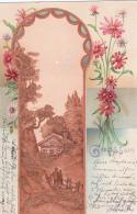 Jolie Carte ; Grüss Aus - Collage Du Gauffrage - 1902 - Cartes Postales
