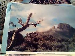 MAURITIUS ISLE ILE MAURICE MONTAGNE DU CORPE DE GARDE  VB1995 FV8955 - Mauritius