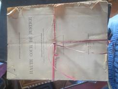Haute Cour De Justice - 1945- Proces Du Marechal Petain - Compte Rendu In Extenso Des Audiences COMPLET - VOIR PHOTOS - Documenti Storici