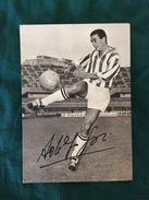 Foto Allegata A Hurrà Juventus Di Adolfo Gori Della Juventus Con Autografo Originale - Fútbol