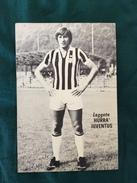 Foto Allegata A Hurrà Juventus Di G. Marchetti Della Juventus - Fútbol