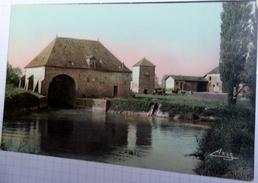 CPA - 71 - Bragny Sur Saône - Ancienne Demeure De Ponthus De Thiard - Années 50 - Autres Communes