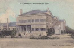 Lierneux - Etablissement Des Aliénés (animée, Colorisée, Edition L. Duparque, 1912) - Lierneux