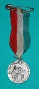 Medaglia Instituto S. LEONE MAGNO - 2 - Professionali / Di Società