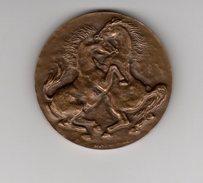 Bronze _    Fête Du Cheval 28 Mai 1972  L'ile Adam(scan Agrandit)RF - Monnaies & Billets