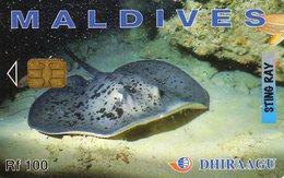 *IS. MALDIVE* - Scheda Usata - Maldives
