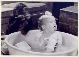 Humor - Umoristica - Bambino E Scimmia - Batha Time - 5349 - Formato Grande Non Viaggiata - Humor