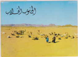 AFRIQUE NORD,MAGHREB,AFRICA,ALGERIE,SAHARA OUEST,TOUAREG DU DESERT,HOGGAR - Algérie