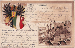 Neuchâtel : Château Et Les Alpes - 3ème Choix !!! - NE Neuenburg