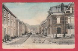 Hamoir - Rue Du Pont ... Superbe Carte Couleur  - 1906 ( Voir Verso ) - Hamoir