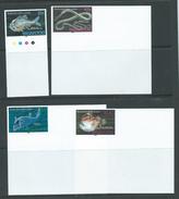 Tonga Niuafo´ou 1989 Fish Ocean Protection Set Of 4 Imperforate Plate Proofs With Jumbo Margins MNH - Tonga (1970-...)